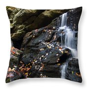 Hidden Falls 1 Throw Pillow