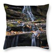 Hidden Falls 3 Throw Pillow