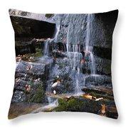 Hidden Falls 6 Throw Pillow