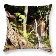 Hidden Fawn Throw Pillow