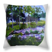 Hidden Florida Throw Pillow
