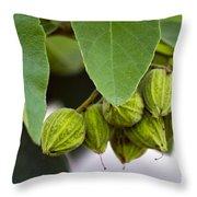 Hidden Fruit Throw Pillow
