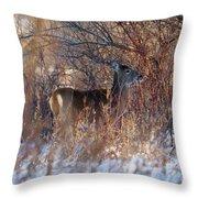 Hidden In The Trees Throw Pillow