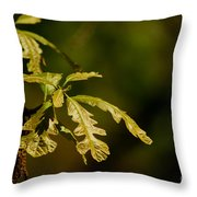 Hidden Leaves With A Green Back Ground Throw Pillow by Robert D  Brozek