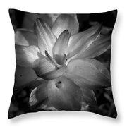 Hidden Lilly  Throw Pillow