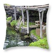 Hidden Luxury Throw Pillow