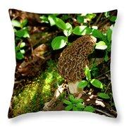 Hidden Morel   Throw Pillow