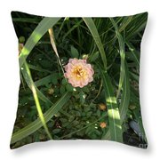 Hidden Perfection Throw Pillow by Jacquelyn Roberts