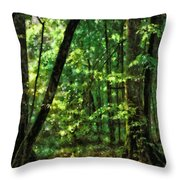 Hidden Places Throw Pillow