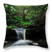 Hidden Rainforest Throw Pillow