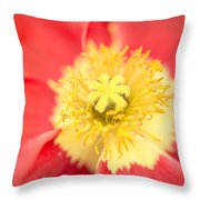 Hidden Softness Throw Pillow