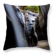 Hidden Splendor Throw Pillow
