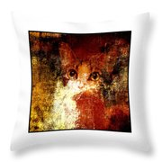 Hidden Square White Frame Throw Pillow by Andee Design