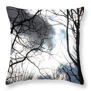 Hidden Sun Throw Pillow