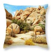 Hidden Valley Trail Throw Pillow