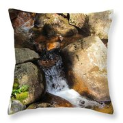 Hidden Waterfall Throw Pillow