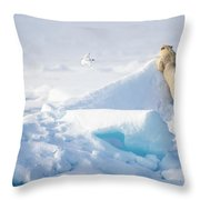 Hide And Seek, Ursus Maritimes, Fulmars Throw Pillow
