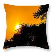 Hide N Seek Throw Pillow