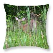 Hiding Deer Throw Pillow