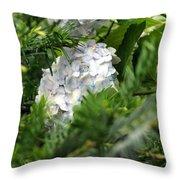 Hiding Hydrangea Throw Pillow