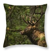Hiding In The Woods Throw Pillow