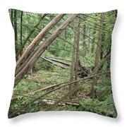Higgins Lake Throw Pillow