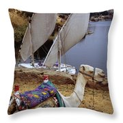 High Angle View Of A Camel Resting Throw Pillow