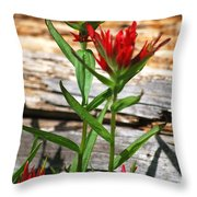 High Country Wildflowers Throw Pillow