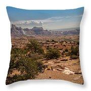 High Desert II Throw Pillow