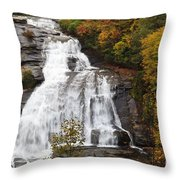 High Falls In The Dupont State Forest Throw Pillow