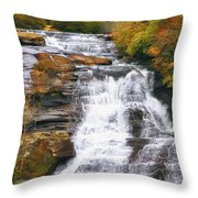 High Falls Throw Pillow by Scott Norris
