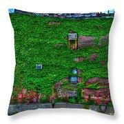 High Line Ivy Throw Pillow