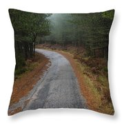 High Mountain Road Throw Pillow