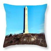 High Point Monument Nj Throw Pillow