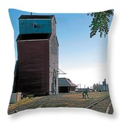 High River Throw Pillow