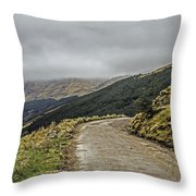 High Road Throw Pillow