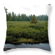 High Rollaway Throw Pillow