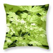 High Street Decor 5 Throw Pillow