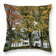Highgate Beauty Throw Pillow