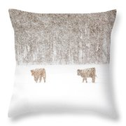 Highland Cattle In The Snow Throw Pillow