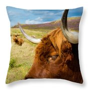 Highland Cattle On Scottish Pasture Throw Pillow
