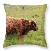Highland Caw Throw Pillow