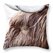 Highland Cow Color Throw Pillow by John Farnan