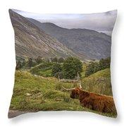 Highland Cow In Scotland Throw Pillow