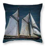 Highlander Sea Throw Pillow