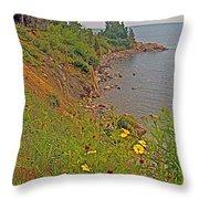 Highlands Coastline In Cape Breton Highlands Np-ns Throw Pillow