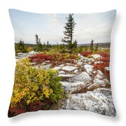 Highlands Of West Virginias Dolly Sods Throw Pillow