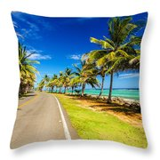 Highway And Coast Throw Pillow