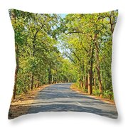 Highway In The Forest Throw Pillow
