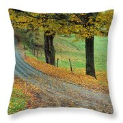 Highway Passing Through A Landscape Throw Pillow